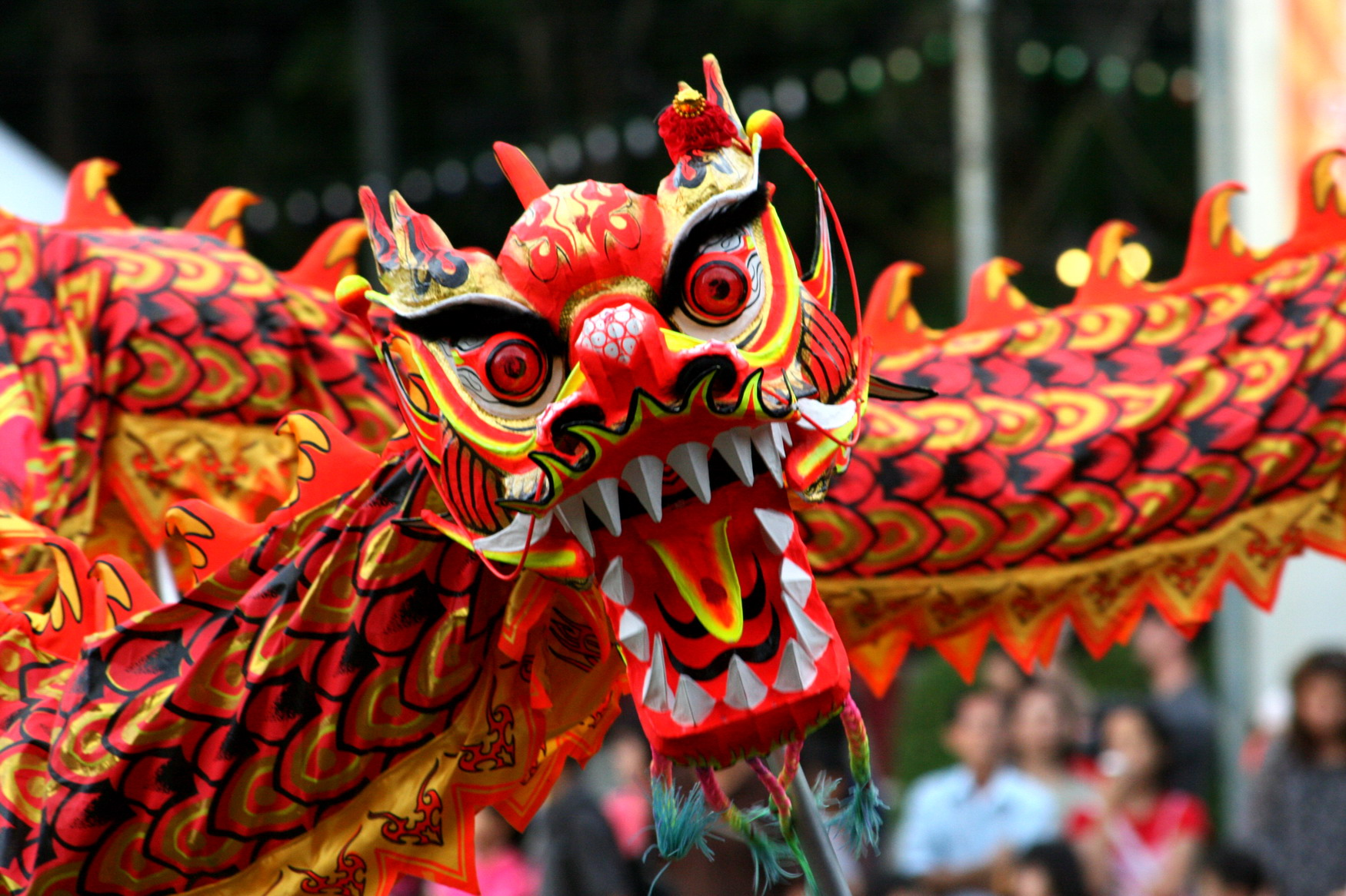 10 Reasons Why You Should Celebrate Chinese New Year ...