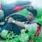 shaazan